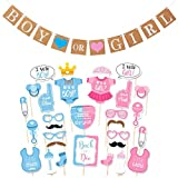 Boy or Girl Banner and Gender Reveal Photo Booth Props on Sticks Set Decorations
