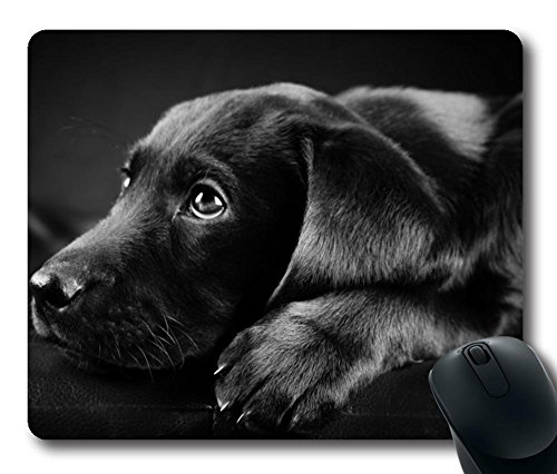 Gaming Mouse Pad Natural Eco Rubber Custom Oblong Black Cute Labrador MousePad Computer Desk Stationery Accessories Mouse Pads For Gift