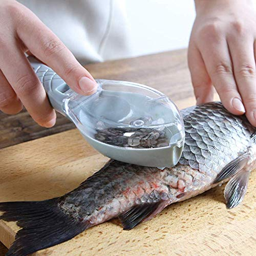 K R Creation Fish Scale Remover Scrapper Scaler Cutter Cleaning Tools for Kitchen Home and Accessories Gadgets Items Fish Scaler (Pack of 1)