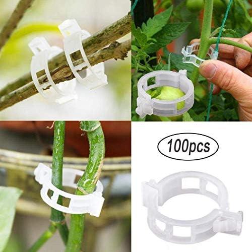 auvstar 100 Stück Pflanzenclips Pflanzenklammern für Tomaten,Pflanzen Sicherung Unterstützt,Stabile Klammern für Kletterpflanzen Befestigung,Pflanzen aufrecht und gesünder zu Werden