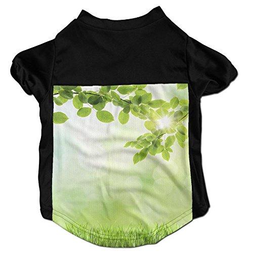 Richard Lyons Fashion Sleeveless Pet Supplies Dog Cat Clothes Abstract Green Natural Background Pet Apparel Clothing S Black by Richard Lyons