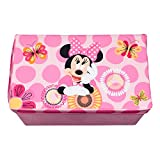 Minnie Mouse Collapsible KidsToy Storage Chest by Disney - Flip-Top Toy Organizer Bin for Closets, Kids Bedroom, Boys & Girls Toys - Foldable Toy Basket Organizer with Strong Handles & Design