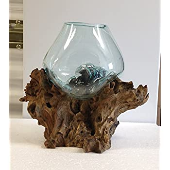Amazon.com : Hand Blown Molten Glass and Wood Root Sculptured ...