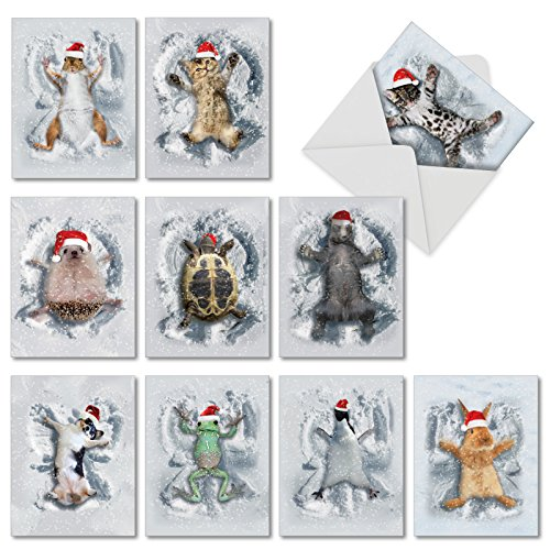 Critter Snow Angels - 10 Assorted Christmas Thank You Cards with Envelopes (4 x 5.12 Inch) - Animals Making Snow Angels in Santa Hats - Boxed Gratitude Greeting Note Card Set M4187XTG-B1x10