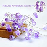 Purple Indoor String Lights Amazon Com