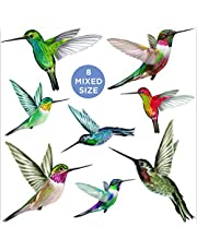 Stickers4 Humming Bird - Parent