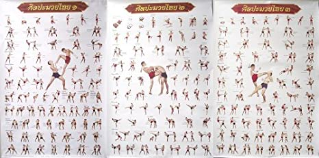 MUAY THAI KICK BOXING 3 POSTERS FOR TECHNICAL EDUCATION