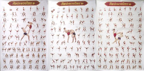 Muay Thai Kickboxing Technical Training Education 3 Posters by MuayThai