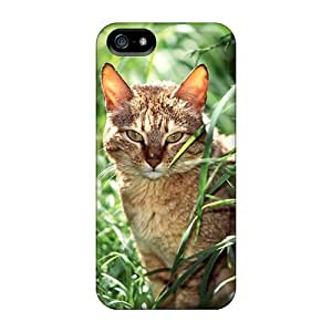 Case Cover Wild Cat/ Fashionable Case For Iphone 5/5s