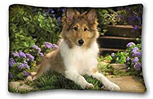 """Custom Cotton & Polyester Soft ( Animals dog puppy chenrysh is sad flower chamomile ) Pillowcase Cover 20""""X30"""" One Side suitable for California King-bed PC-Purple-32411"""