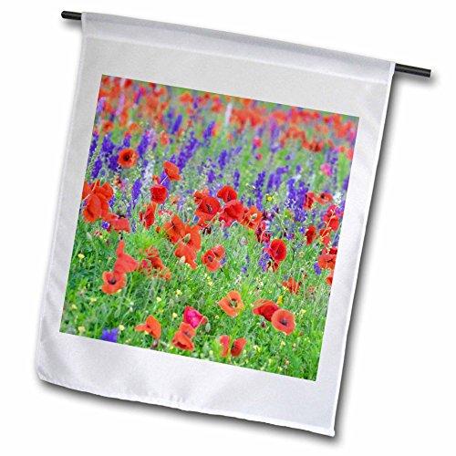 3dRose Danita Delimont - Flowers - Poppy wildflower field, Mount Olive, North Carolina, USA - 18 x 27 inch Garden Flag (fl_279270_2) (Pole Field Single Mount)