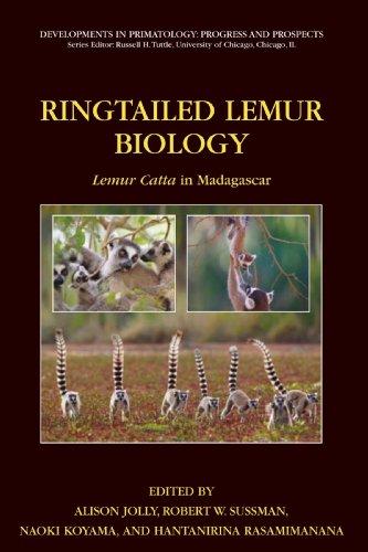 Ringtailed Lemur Biology: Lemur catta in Madagascar (Developments in Primatology: Progress and Prospects)