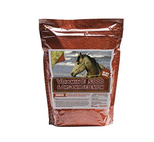51npKs9e2oL - Horse Guard Vitamin E & Organic Selenium