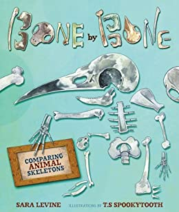 Bone by Bone: Comparing Animal Skeletons (Millbrook Picture Books) by [Levine, Sara C.]
