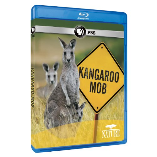 Nature: Kangaroo Mob [Blu-ray]