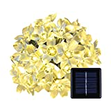 ANNT Solar Powered 16.4ft 50 LED Peach Blossom String Lights for Gardens, Lawn, Patio, Christmas Trees, Weddings, Parties Decorations waterproof (50 LED, Warm white)