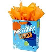 Hallmark Large Birthday Gift Bag with Tissue Paper (Birthday Boy)