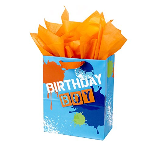 Hallmark Large Birthday Gift Bag with Tissue Paper (Birthday Boy) - Kid Birthday Gift
