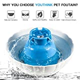Super Silent Ceramic Pet Fountain for Dogs or Cats Sturdy Healthy Drinking Water Bowl 2.1L / 74 Oz Automatic Electric Water Dispenser Dishwasher Safe,Blue & White