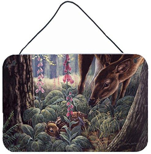 UPC 638508180377, Caroline's Treasures BDBA0259DS812 Doe & Fawn Deer Wall or Door Hanging Prints BDBA0259DS812,Multicolor,8HX12W