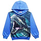 BABSUE Kids Boys Toddler Hoodie Dinosaur Sweatshirts Long Sleeve Hot Top Cartoon Hooded Casual Outfit 4-8 T