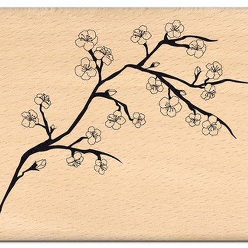 8 x 10 x 2,5 cm Color: Amarillento Floril/èges Dise/ño FG 111109 Sello para Scrapbooking fantas/ía: Cereza