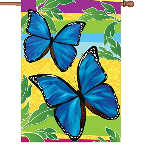 Premier 52473 House Illuminated Flag, Bright Blue Butterflies, 28 by 40-Inch