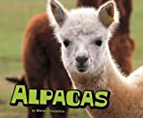 Alpacas (Farm Animals)