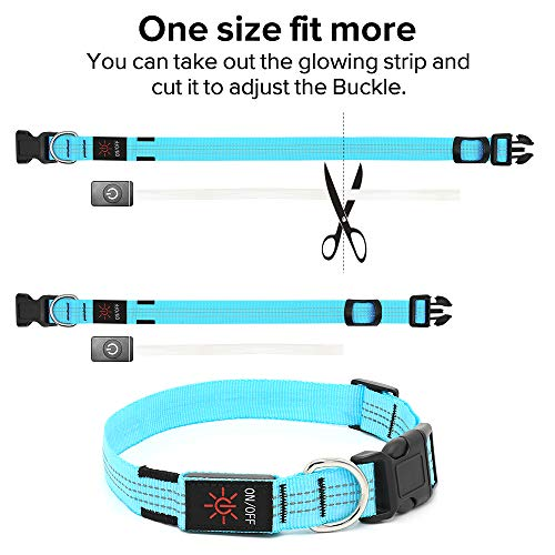 Candofly Rechargeable LED Dog Collars - Glow in The Dark Dog Lights Durable Nylon Lighted Collars for Small Medium Large Dogs Keep Your Pets Be Visible & Safe at Night (Blue, Small)