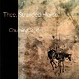 Churning Strides by Thee Stranded Horse
