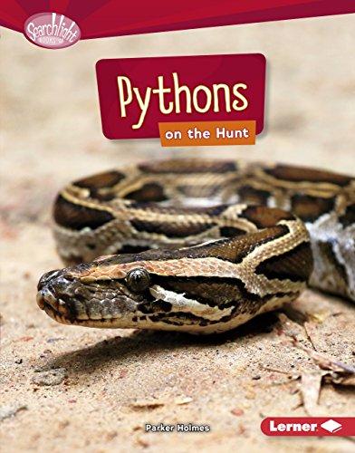 Pythons on the Hunt (Searchlight Books ™ — Predators) image