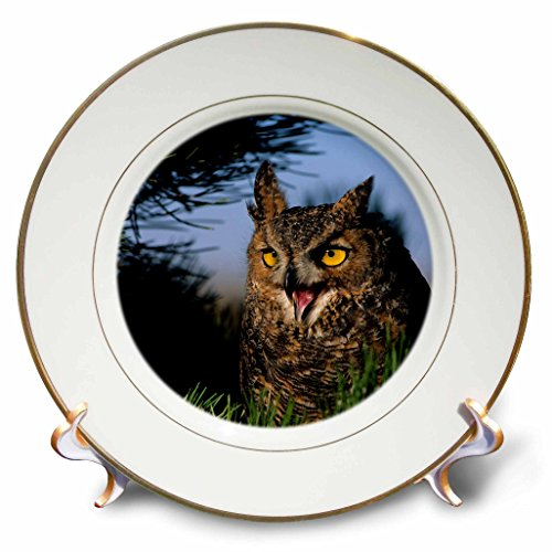 Hooting Owl Clock - 8