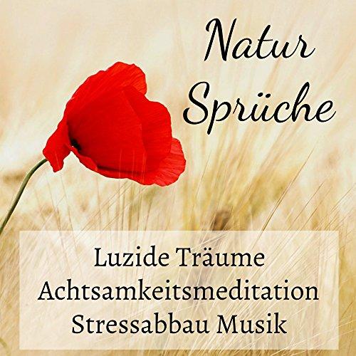 Natur Sprüche   Luzide Träume Achtsamkeitsmeditation Stressabbau Musik Mit  Beruhigende Binaurale Entspannende New Age Geräusche
