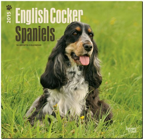 Download By BrownTrout English Cocker Spaniels 2015 Square 12x12 (Multilingual Edition) (Wal) [Calendar] pdf