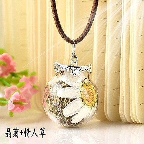 - 2017 Wishing Bottle Glass Natural Real Dried Flowers Pendant Necklace Chain EW (Daisy+Valentine Grass)