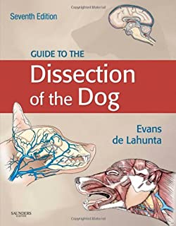 guide to the dissection of the dog net developers series - Saunders Veterinary Anatomy Coloring Book