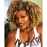 Best African American Wigs - AISI HAIR Synthetic Afro Curly Hair Wigs Brown Review