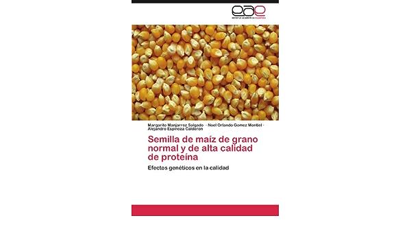 Semilla de Maiz de Grano Normal y de Alta Calidad de Proteina ...