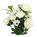 Admired-By-Nature-GPB6428-CREAM-Faux-Rose-G-Daisy-Ranunculus-Mixed-Flower-Bush-cm