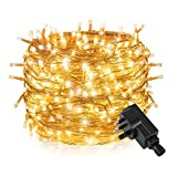 200 LED 20M String Fairy Lights,Tersely Low Voltage 31V Indoor Fairy Lights for Christmas Tree Party Wedding Events Garden (8 Lighting Modes, Memory Function)(Warm White)