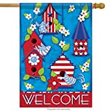 Carson Home Accents FlagTrends Classic Large Flag, Patriotic Birdhouses Review