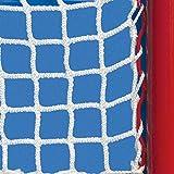 EZ Goal Hockey Replacement Net