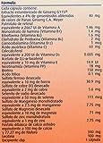 Pharmaton 30 Caps Mejora el rendimiento diario y