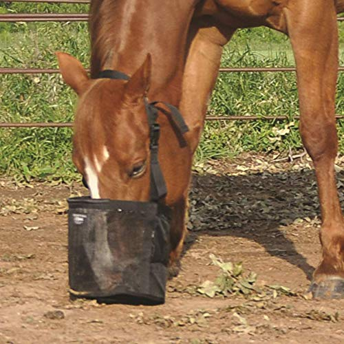 Cashel Feed Rite Bag Draft, Horse, Mini/Foal, or Pony Colors: Black, Blue, Orange or Pink ()