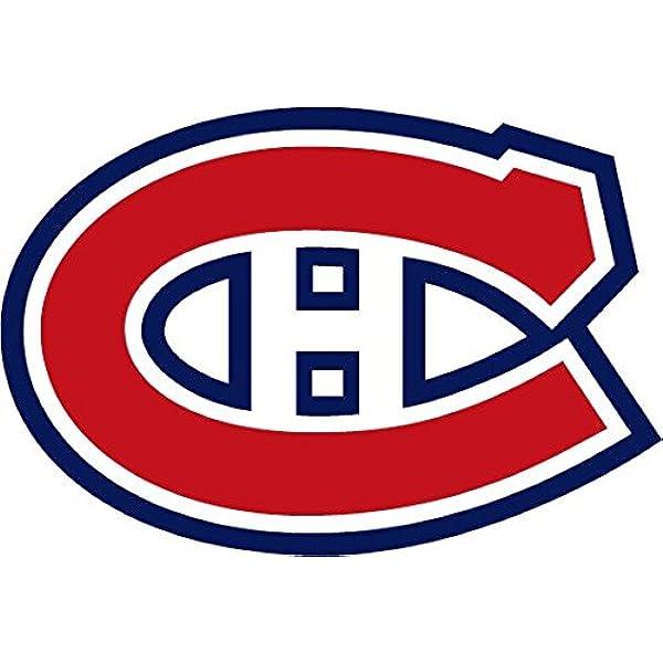 USA Hockey Logo Car Bumper Sticker Decal 9/'/' 12/'/' or 14/'/'