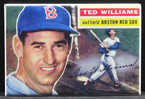 Ted Williams Refrigerator Magnet.