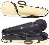 Bam France 2002XL Contoured Hightech Anise Green 4/4 Violin Case
