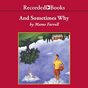 And Sometimes Why Audiobook