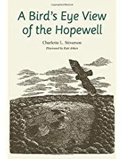 A Bird's Eye View of the Hopewell