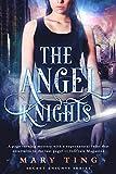 The Angel Knights-(Novella) Prequel